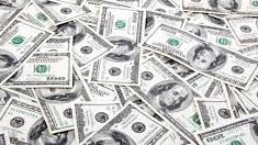 Dollar sedlar