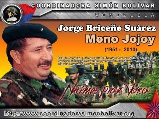 mono_jojoy_csb